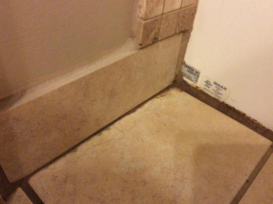 Palliser Lodge: dirty bathroom