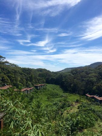 The Rainforest Ecolodge: photo8.jpg