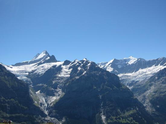 Grindelwald, Schweiz: 上と下のグリンデルワルド氷河が一望できます。アイガーやフィッシャーホルンももちろん。