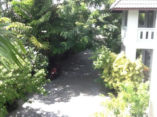 Rawai Beach Resort : From my room