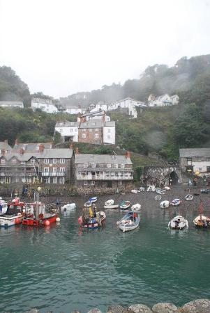 Clovelly Village: Harbour