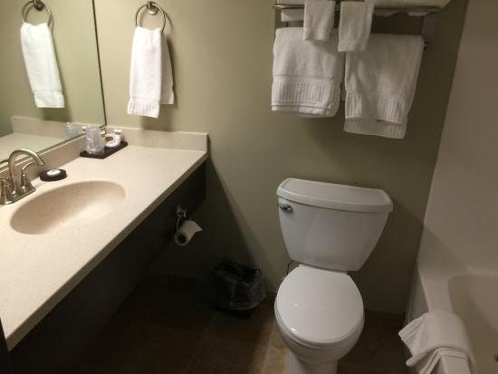 Grand Portage Lodge and Casino: Bathroom