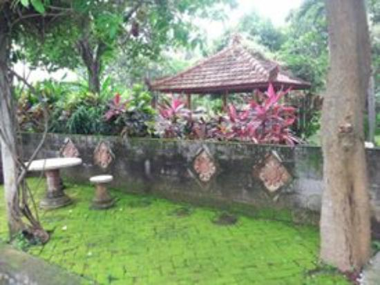 Sawah Lovina Bungalows: A nice place to chill.