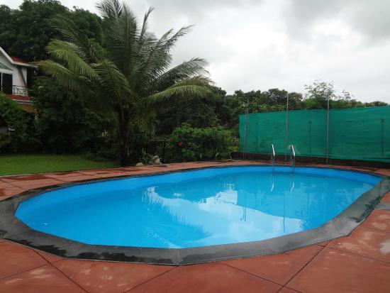 Ghanvatkar Bunglow at Zirad : swimming pool