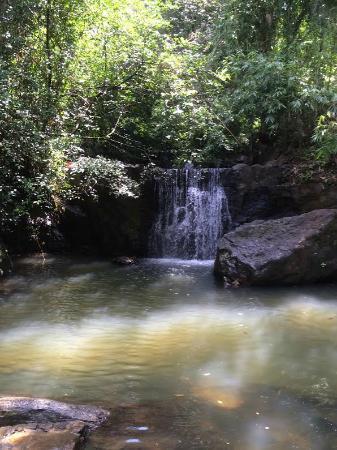 Epitawala, Sri Lanka: nature
