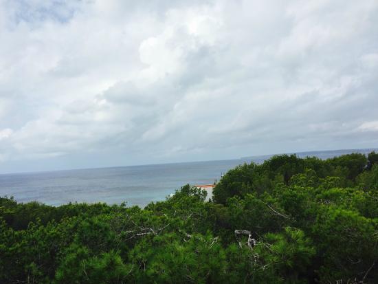 Es Ram Resort: Terrace view from the restaurant/breakfast area