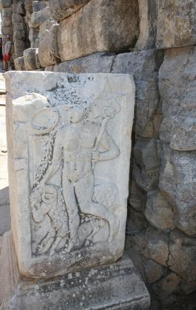 Ephesus Deluxe Tours: Ephesus