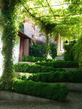 Travassos, Portugal: photo0.jpg