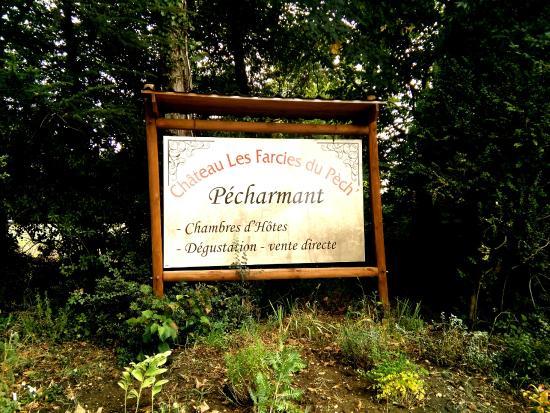 Chateau Les Farcies du Pech': Panneau à l'entrée