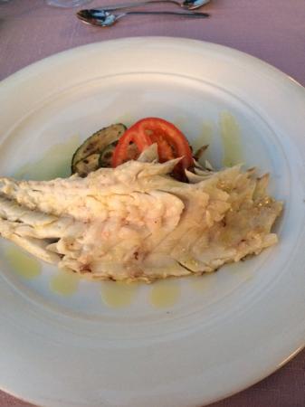 Villa Ruza Old City Bistro: Sea bass drizzled in homemade olive oil
