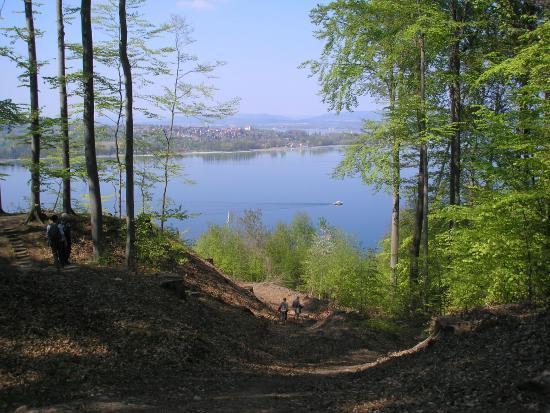 Gasthaus Hirschen: Ausblick auf die Halbinsel Höri am Bodensee