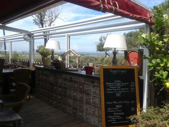 Le Petit Nice Sud : Vue depuis la terrasse