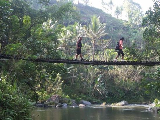 Bali Green Planet