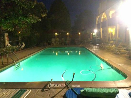 Serendipity Inn: Pool