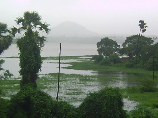 Powai Lake: the refreshing monsoon view