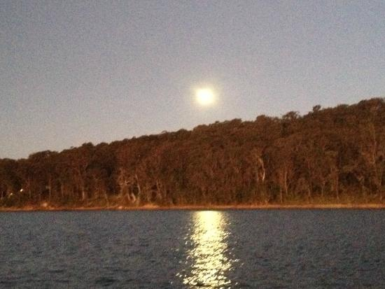 Swansea Gardens Lakeside Holiday Park: View from the the boat of the moon rising over the trees