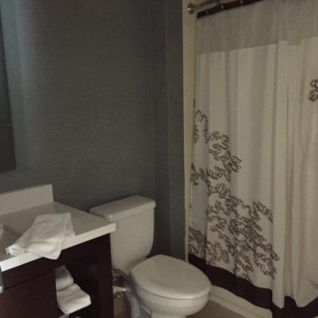 Residence Inn Albany Washington Avenue: photo4.jpg