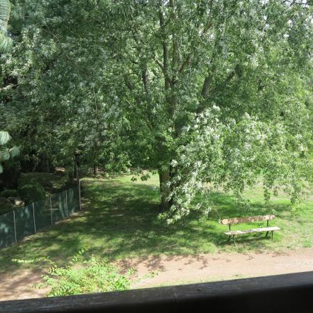 Jardin photo de village motel tournus tripadvisor for Motel jardin