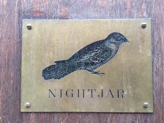 The Nightjar: photo2.jpg