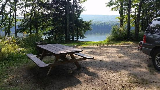 Mongaup Pond Campground: You get a picnic table and a firepit...