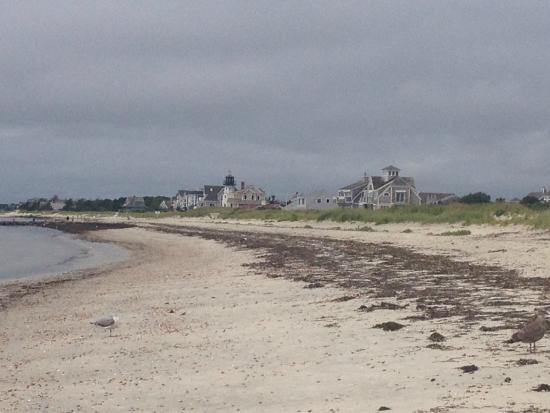 Mariner Motor Lodge: Spiaggia vicino all'hotel (Sea gull beach)