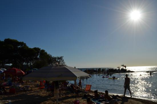 Camping La Vecchia Torre: La spiaggia