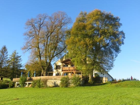 Berggasthof Kreut-Alm: Kreut-Alm