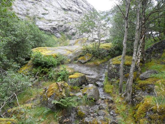 Brenndalsbreen: Brenndalsbre