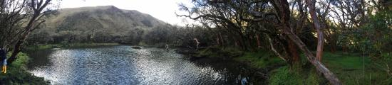 El Angel, Эквадор: laguna en el bosque polylepis