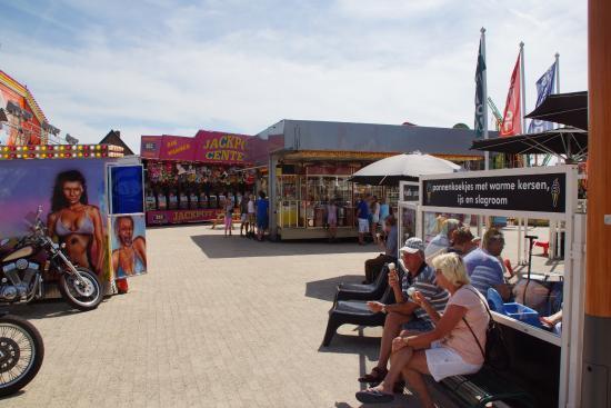 Ort Callantsoog - Picture of Dorpszicht, Callantsoog ...  Ort Callantsoog...