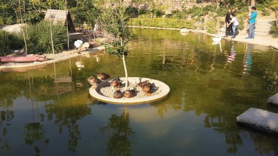 Tehran Bird Garden