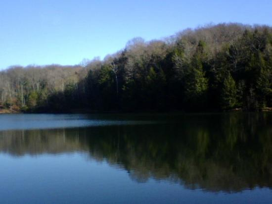 Ohio: Rose Lake near Old man's cave