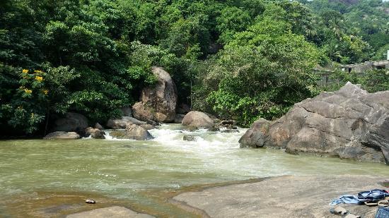 Shenduruny Wildlife Sanctuary: Ottakkal lookout point