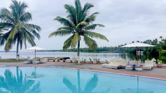 The World Backwaters: pool by the backwaters