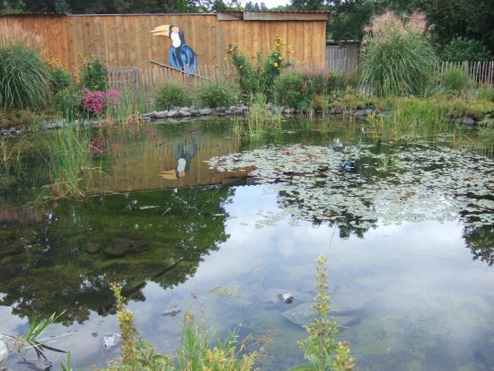 Schotten, Germania: Teichanlage