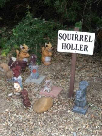 Melba, Айдахо: Squirrel Holler