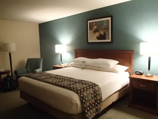 Drury Inn & Suites Birmingham Lakeshore Drive: King size bed