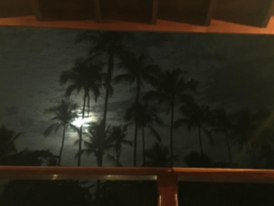 Tambor Tropical Beach Resort: Blue Moon seen from our room's private terrace
