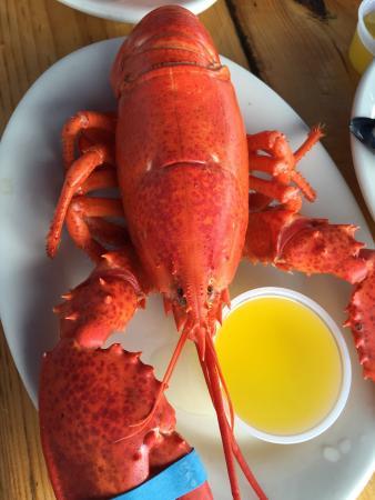 Lobster Trap & Steakhouse, Winslow - Menu, Prices & Restaurant Reviews - TripAdvisor