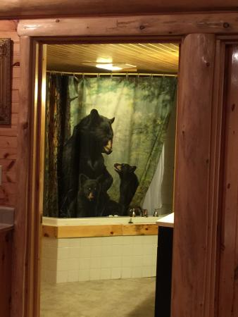 Cobble Mountain Lodge: photo2.jpg