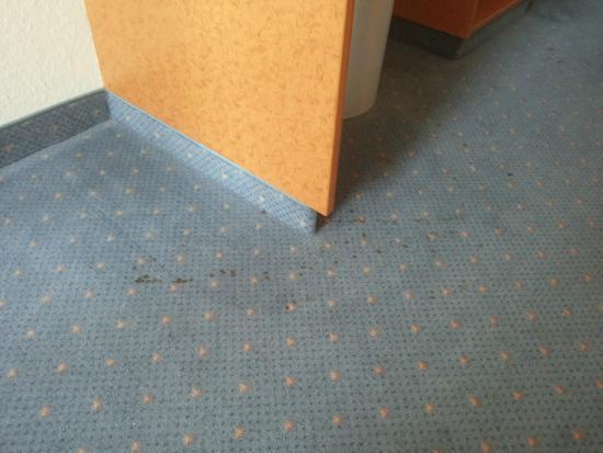 Mercure Hotel Halle Leipzig: nochmals der siffige Teppich