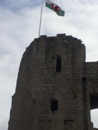 Raglan Castle: photo8.jpg