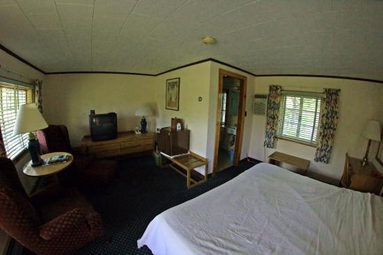 Junge's Motel: room