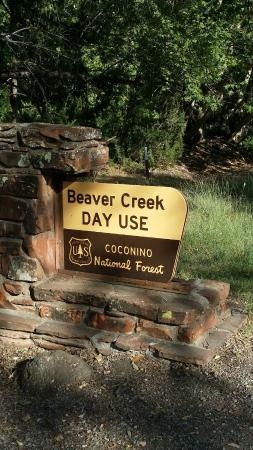 Wet Beaver Creek