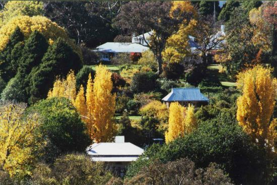 Markdale Homestead : Autumn in the Garden at the Homestead