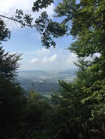 Uetliberg Mountain: photo4.jpg