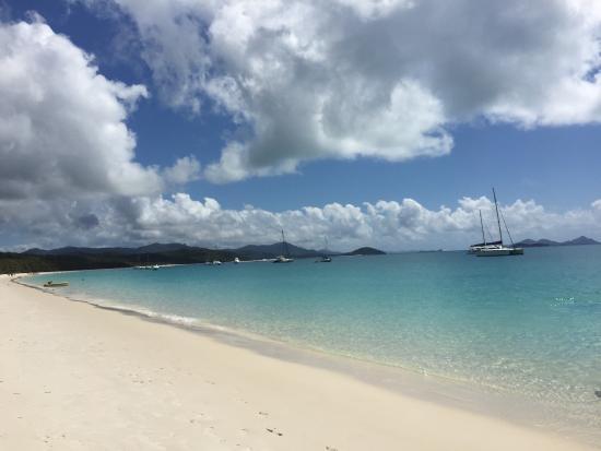 Whitsunday Island Adventure Cruises: photo1.jpg