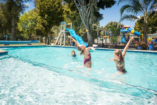 Motueka Top 10 Holiday Park: Heated Swimming Pool