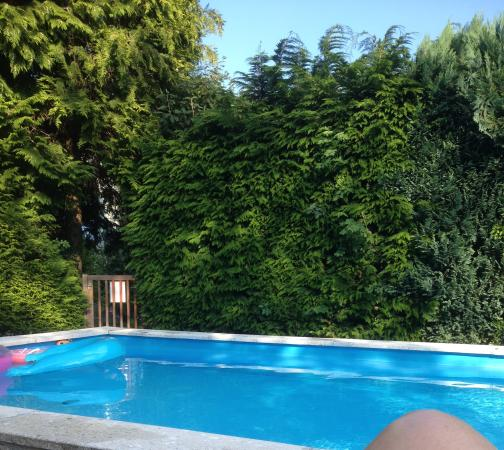 Pension B & B Helmhof: Helmhof Piscina