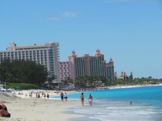 Cabbage beach hotels